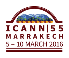 55th International Public ICANN Meeting | 5-10 March 2016 | Marrakech, Morocco